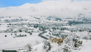Winter in Wanaka